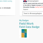 Badges displayed on site