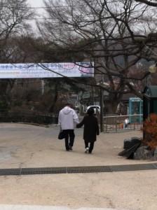 Older couple holding hands outside Bongwonsa (봉원사), Seoul, Korea
