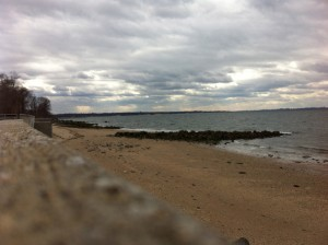 Welwyn Preserve County Park, Long Island, New York: March 2013
