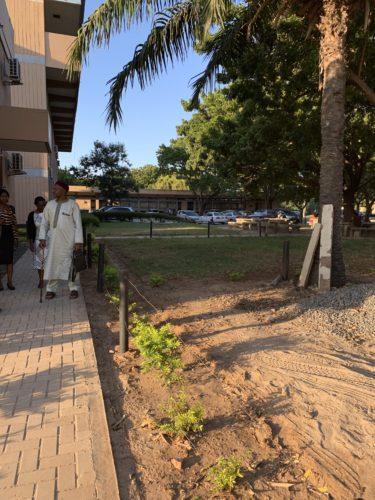 At the University of Dar es Salaam